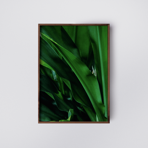 ather-studio---be-green---poster--plant--